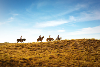Horseback riding at YD Guest Ranch.