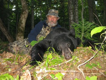 Bear hunting at Bear's Nine Pines Resort.