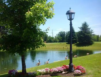 Pond view at Fairway Suites.