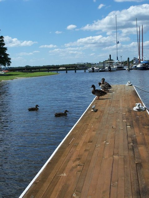 Bridgepointe hotel and marina new bern nc resort for Croatan national forest cabins