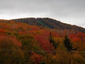 Beautiful Scenery at Inn at Long Trail
