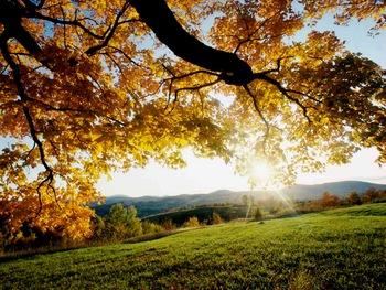 Fall colors at Cedar Valley Lodge.