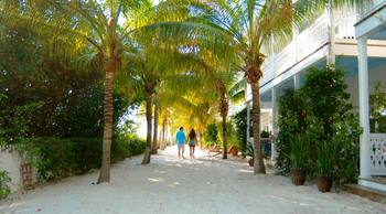 Couple walking at Parrot Key Resort.