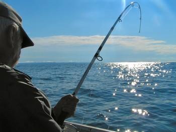 Fishing at Tropic Terrace Resort.