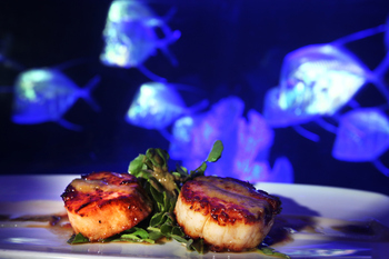 Fine dining at The Seagate Hotel & Spa.