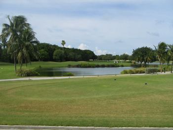 Key West Golf Club near Sheraton Suites Key West.
