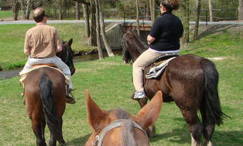 Horseback Riding at Fernwood Resort