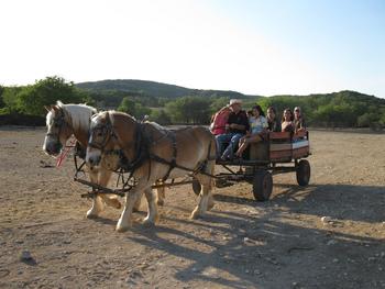 Wagon rides at Rancho Cortez.