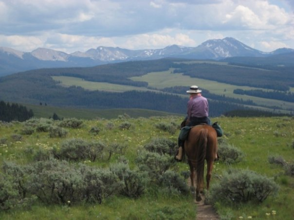 Horseback Riding at 320 Guest Ranch