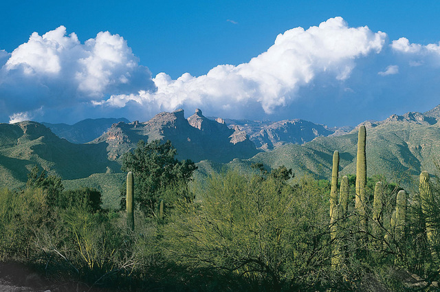 Arizona All Inclusive Resorts Resortsandlodges Com