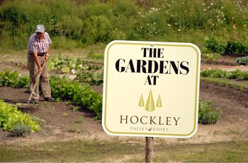 The garden at Hockley Valley.
