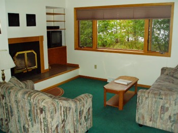 Cabin Living Area at Mountain View Lodges.