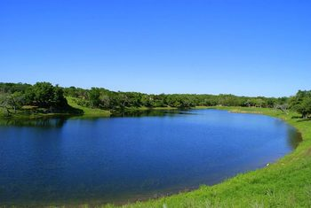 Lake view at Hill Country Premier Lodging.