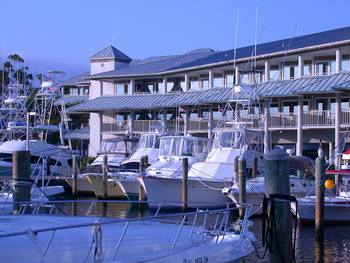 Marina at Pirate's Cove Resort & Marina.
