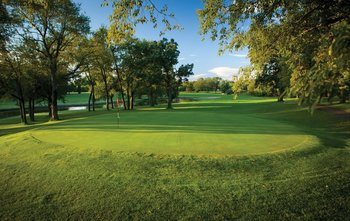 Golf Greens at Coachman's Golf Resort