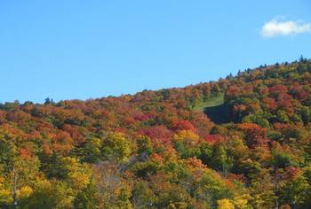 Fall colors at Killington Accommodations.