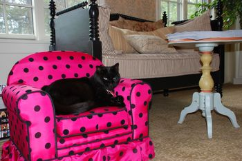 Pet friendly accommodations at Southampton Inn.
