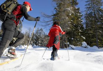 Cross country skiing at The Conger Collection.