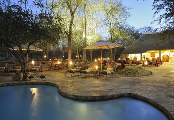 Outdoor pool at Etosha Aoba Lodge.