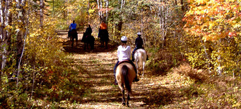 Horseback Riding near Aspen Lodge
