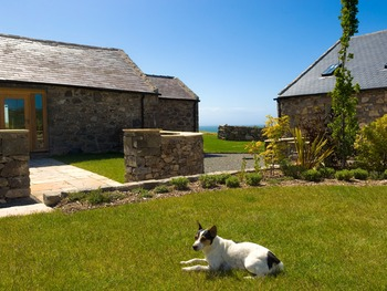 Enjoying the sun at Natural Retreats Llŷn Peninsula in North Wales, a pet-friendly holiday.