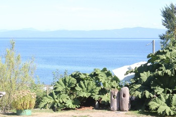 Scenic view at Shady Shores Beach Resort.