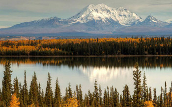 Fall in Alaska near Bridgewater Hotel.