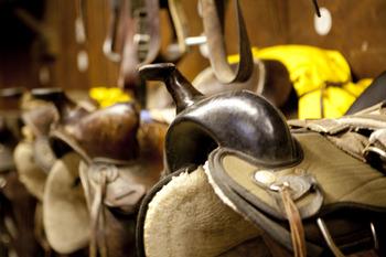 Horse saddles at Cataloochee Ranch.
