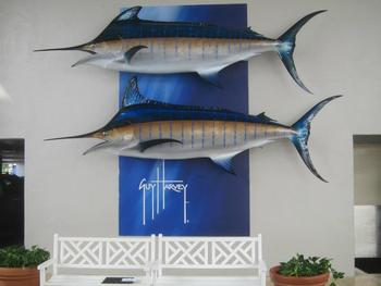 Swordfish On The Wall at Guy Harvey Outpost