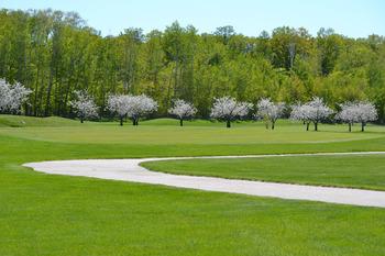 Golf course near Landmark Resort.