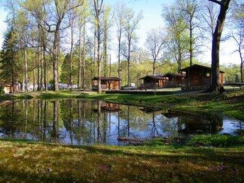 Campground and cabins view at Yogi at Shangri-La.
