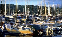 Boats in the harbor at The Resort at Port Ludlow.