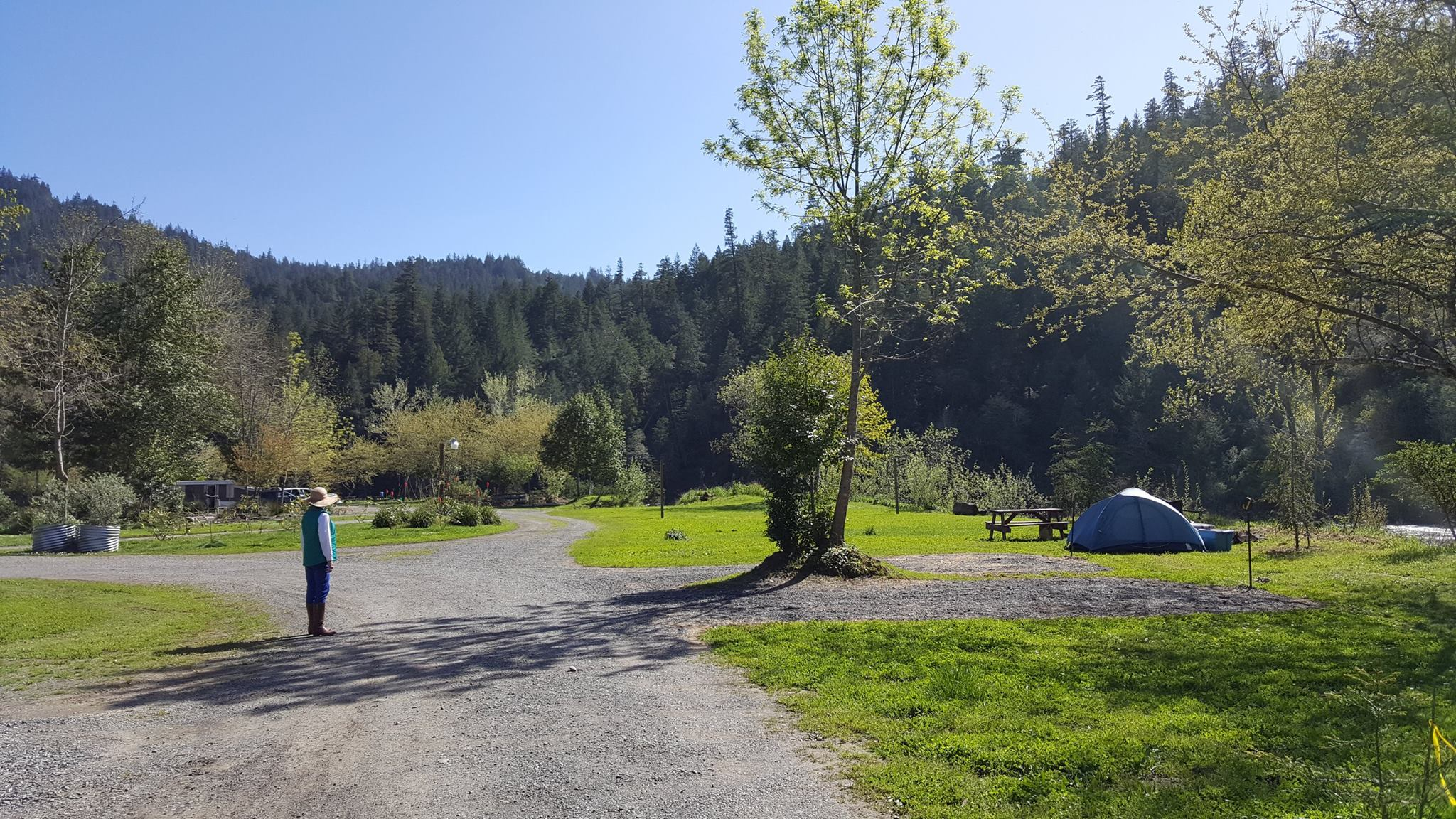 Giant Redwoods Rv Park Amp Camp Myers Flat Ca Resort