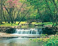 Waterfall at Big Cedar Lodge.