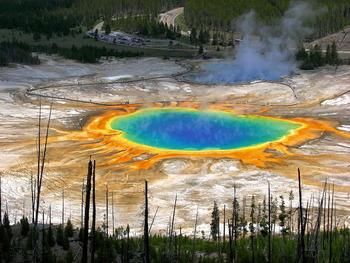 Yellowstone near Sawtelle Mountain Resort.