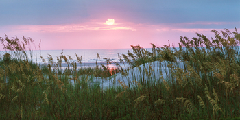 Beach sunset at Intracoastal Realty.