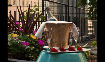 Romantic Gardens at Crowne Plaza Minneapolis