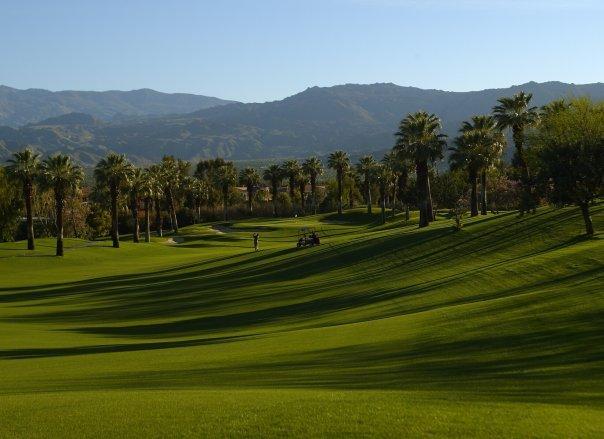 Golf Course at Marriott Desert Springs Resort