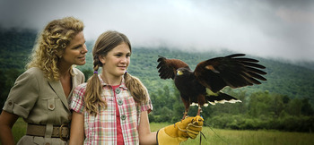 The British School of Falconry at The Inns at Equinox.