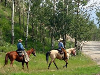 Horseback riding at Bothe State Park near EuroSpa and Inn.