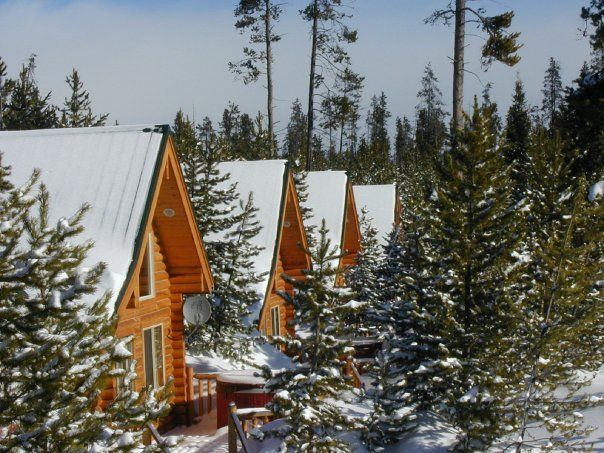 Cabins at The Pines