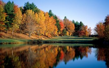 Fall colors at Killington Accommodations.