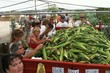 Mortimer_Farms_Sweet_Corn_Festival